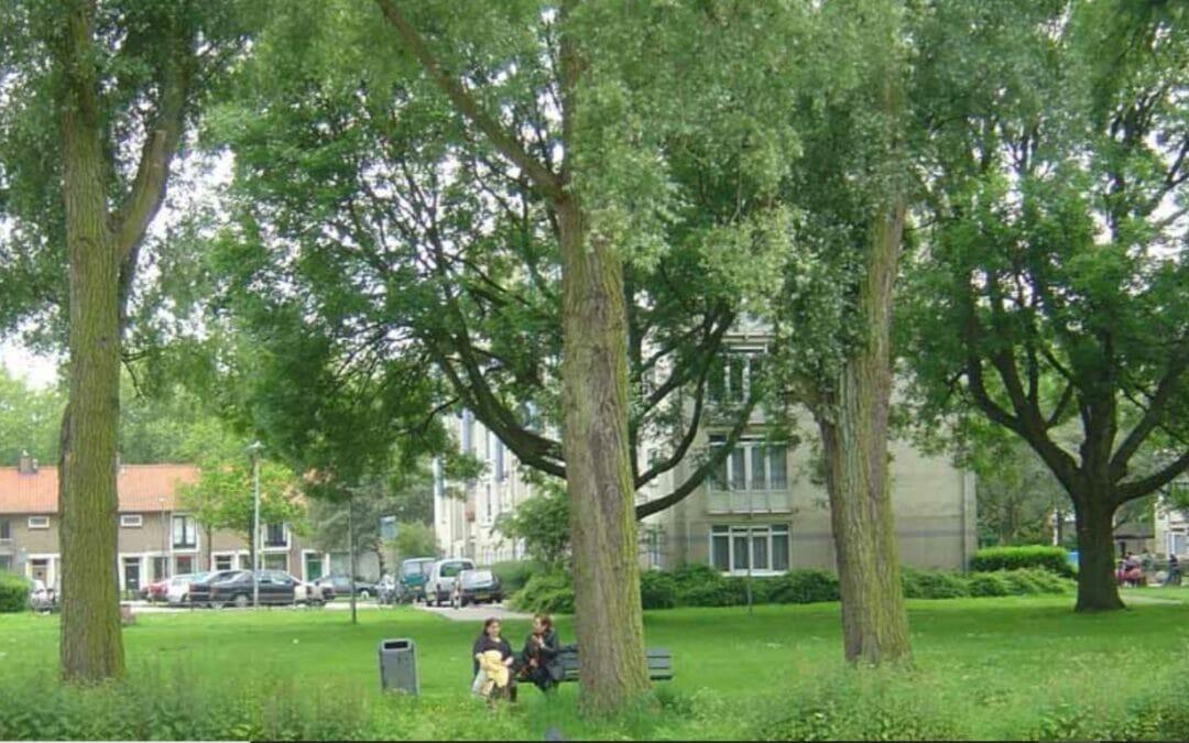 Wijken Kromme Rijn en Halve Maan uitroepen tot gemeentelijk beschermd stadsgezicht