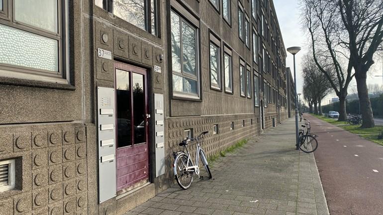 Lelijke eendjes in Rotterdam Overschie. Fotograaf onbekend